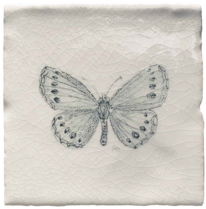 Marlborough Butterflies, Butterfly Taco 5, Edinburgh Tile Studio