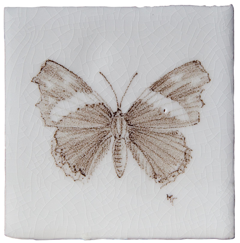 Marlborough Butterflies, Butterfly Taco 6, Edinburgh Tile Studio