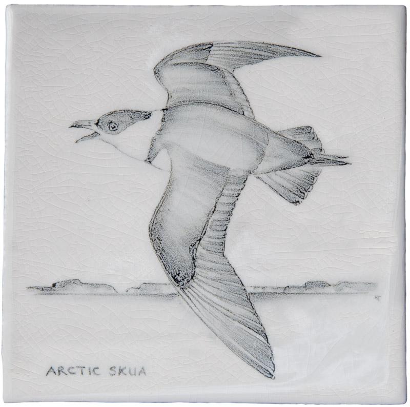 Marlborough Coastal & Moorlands Birds, Arctic Skua, Edinburgh Tile Studio