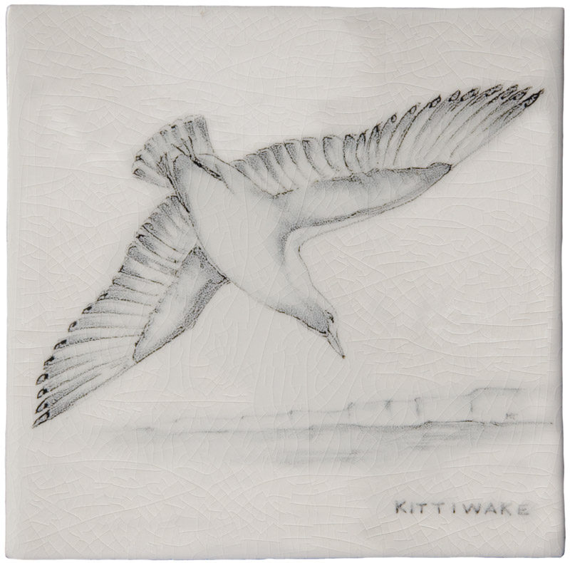 Marlborough Coastal & Moorlands Birds, Kittywake, Edinburgh Tile Studio