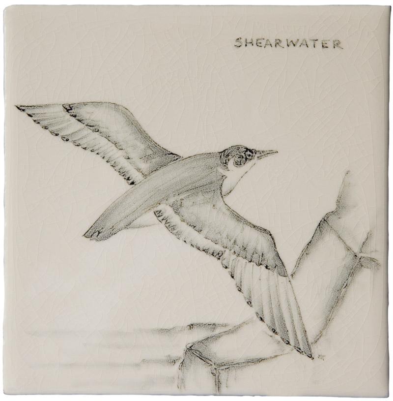 Marlborough Coastal & Moorlands Birds, Shearwater, Edinburgh Tile Studio