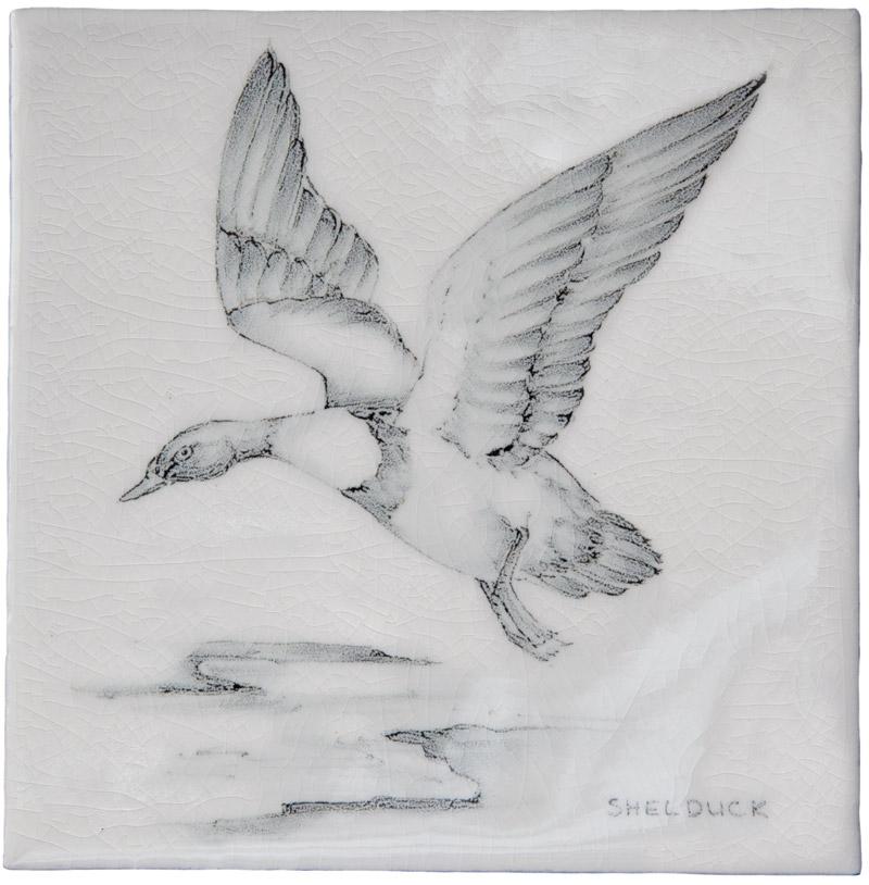 Marlborough Coastal & Moorlands Birds, Shell Duck, Edinburgh Tile Studio