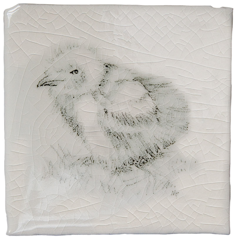 Marlborough Coastal & Moorlands Birds, Taco 3, Edinburgh Tile Studio