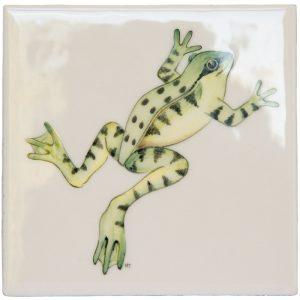 Marlborough Frogs