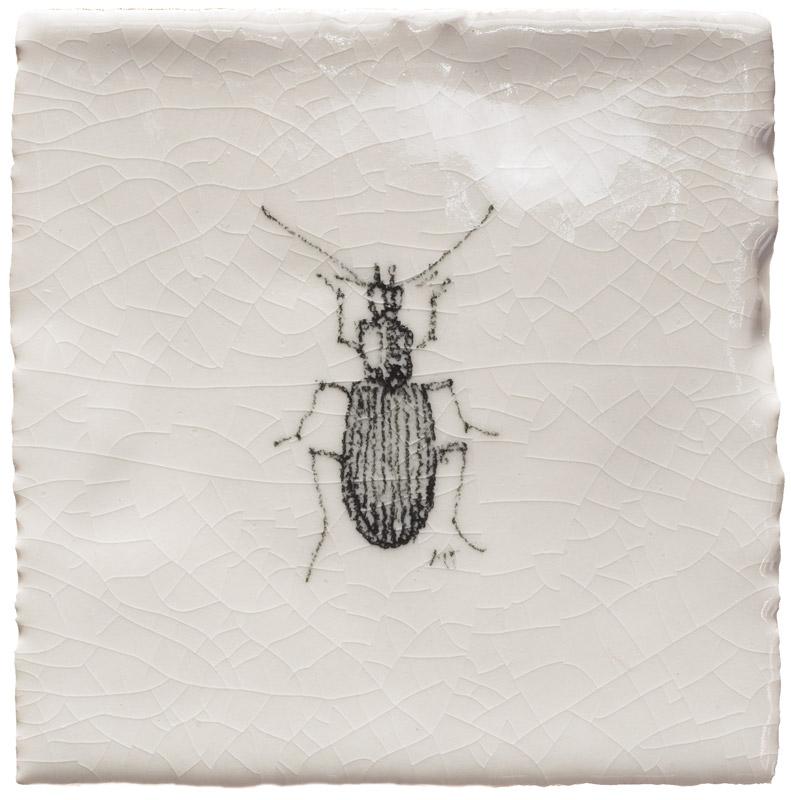 Marlborough Insects & Tacos, design 6, Edinburgh Tile Studio