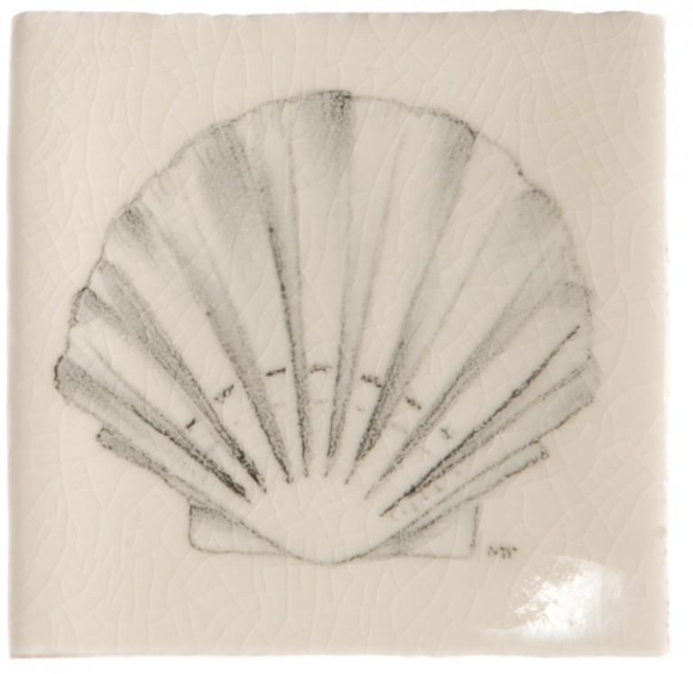Marlborough Shell Taco 2, Edinburgh Tile Studio