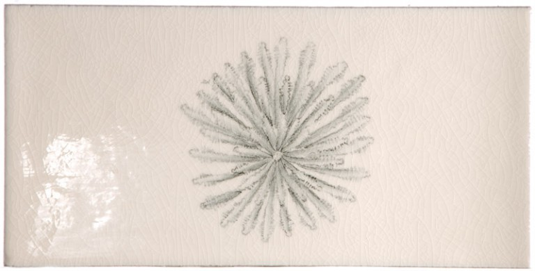 Marlborough Reef Encounters Tile 3, Edinburgh Tile Studio