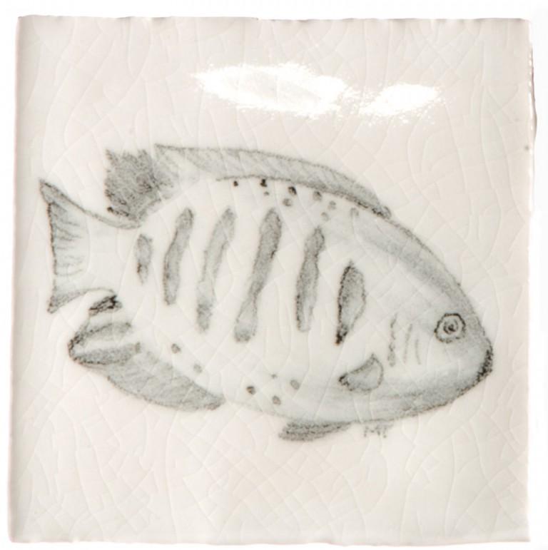 Marlborough Tropical Fish Taco Tile 3, Edinburgh Tile Studio