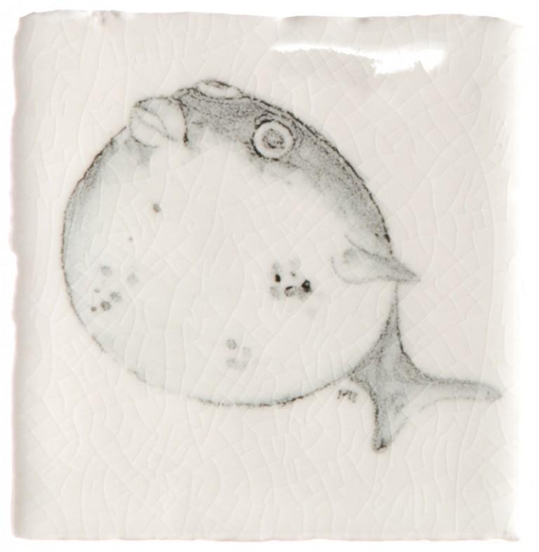 Marlborough Tropical Fish Taco Tile 5, Edinburgh Tile Studio